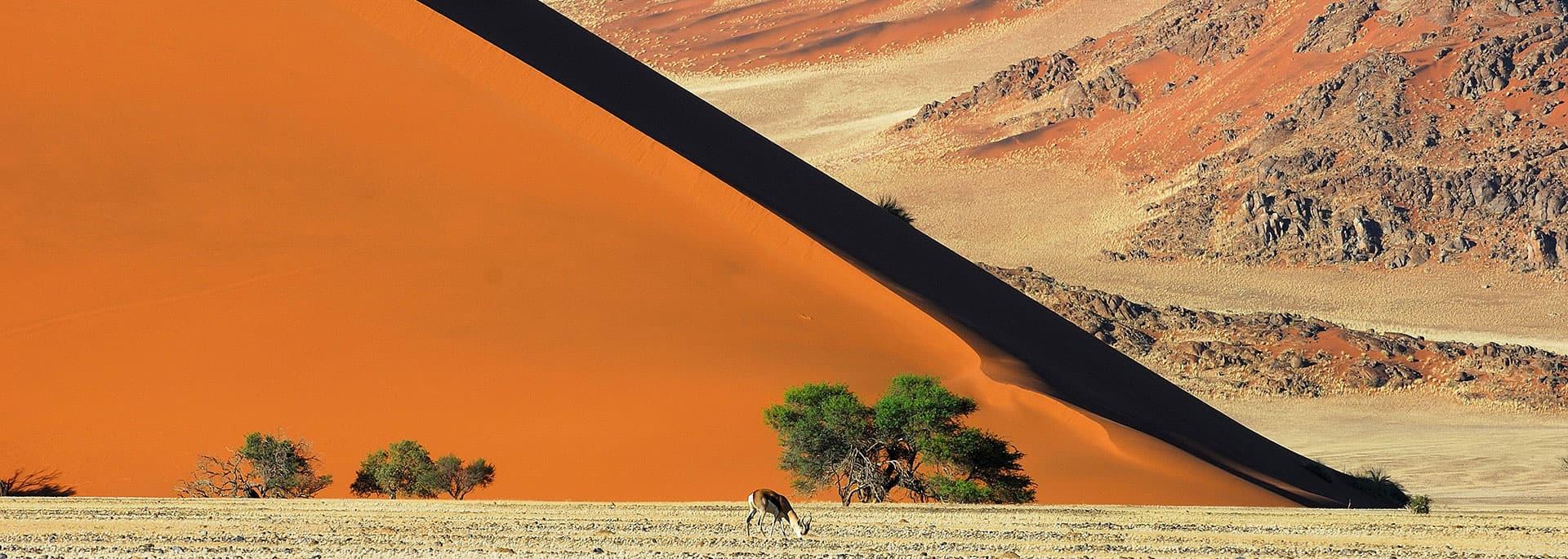 meilleure période Namibie